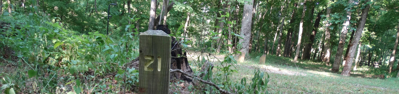 Markham Springs Site 21