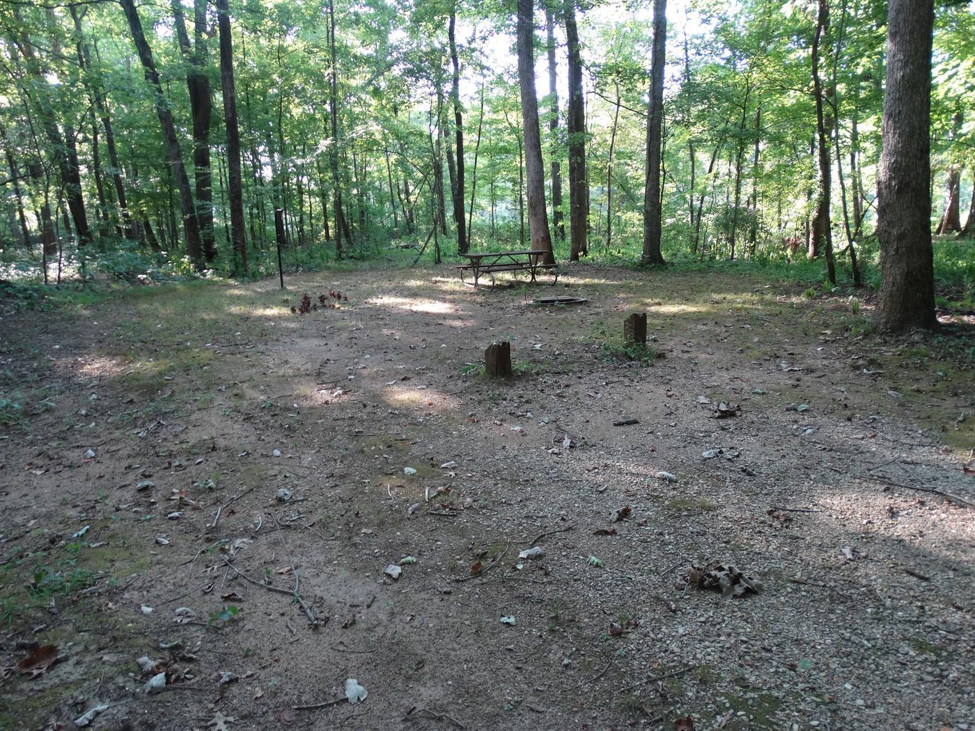 Markham Springs Site 22