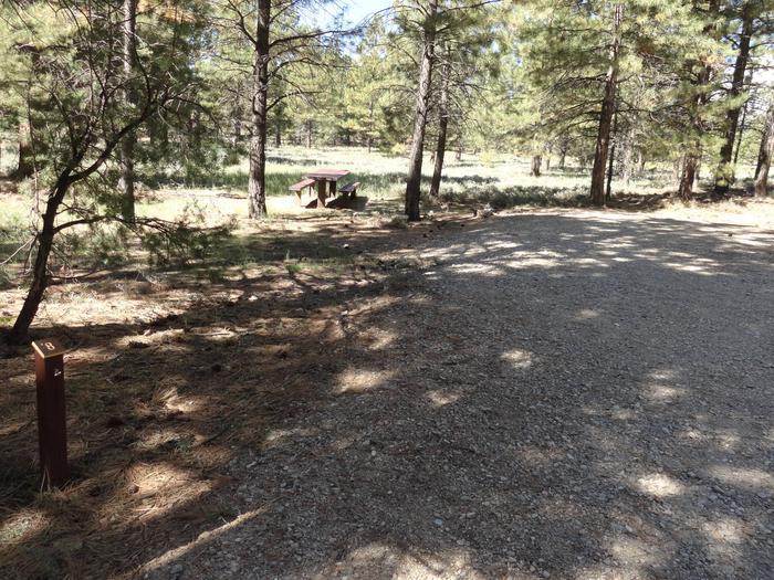 CampgroundCampsite 8