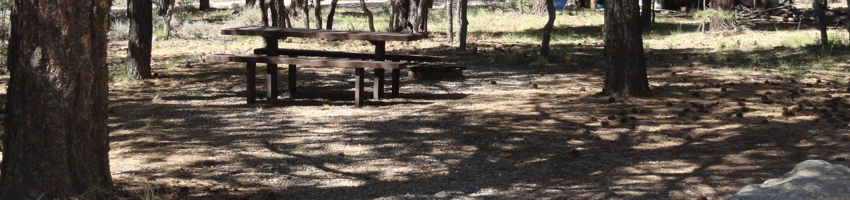 CampgroundCampsite 14