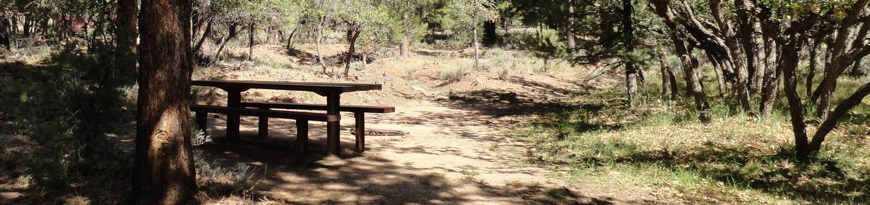 CampgroundCampsite 15