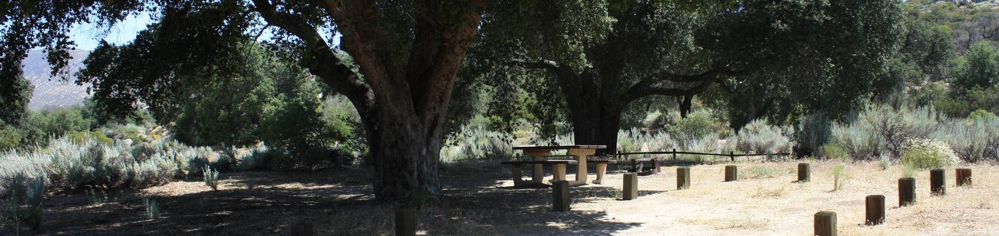 Boulder Oaks Campground Site #4 in Boulder Oaks Campground is shaded by a beautiful Oak tree.