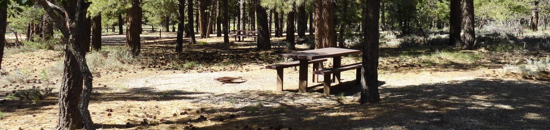 Campground Campsite 17