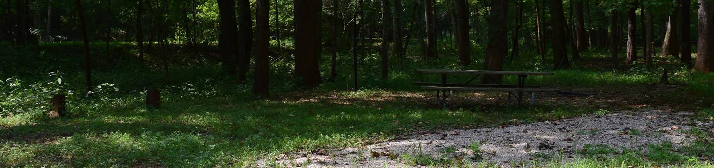 Markham Springs Site 28