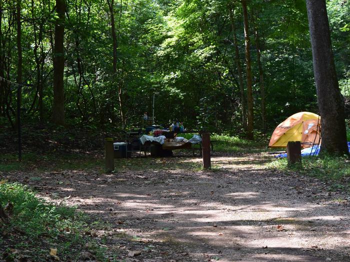 Markham Springs Site 36