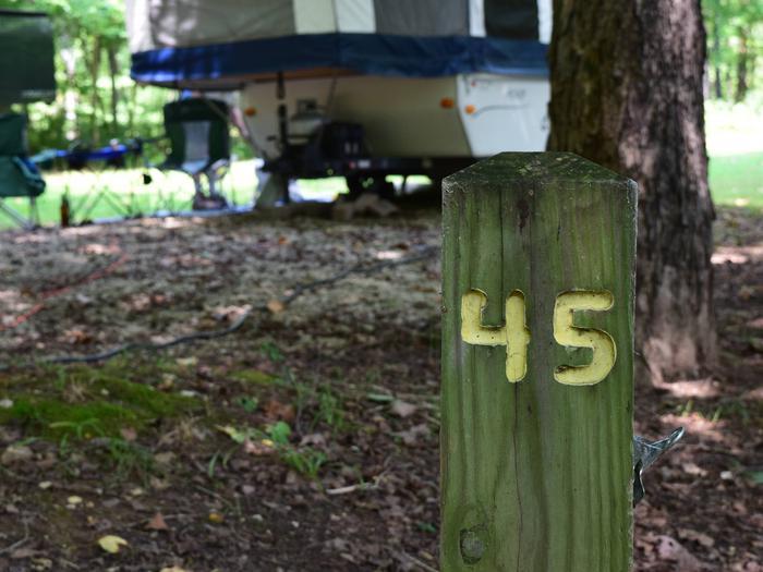 Markham Springs Site 45