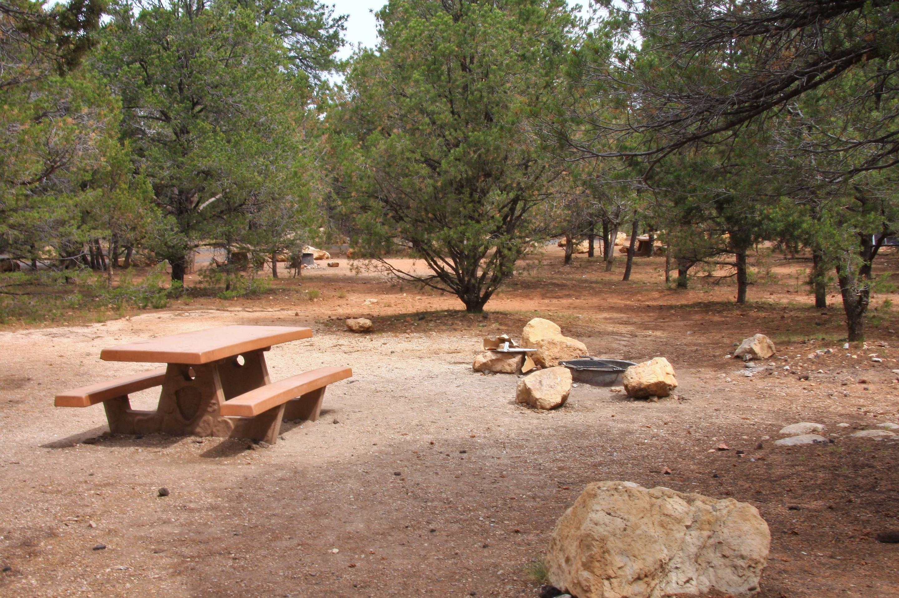 Picnic table and fire pit Mather Campground