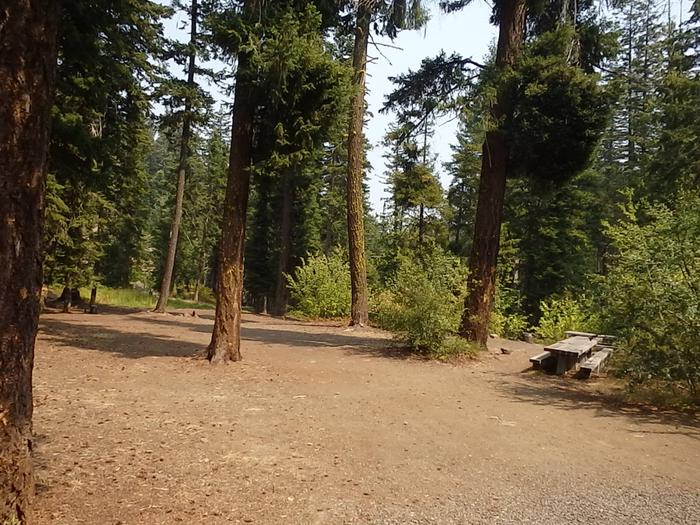 Preview photo of Pine Needle Group Site