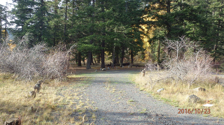 Halfway Flat CampgroundLong parking spur