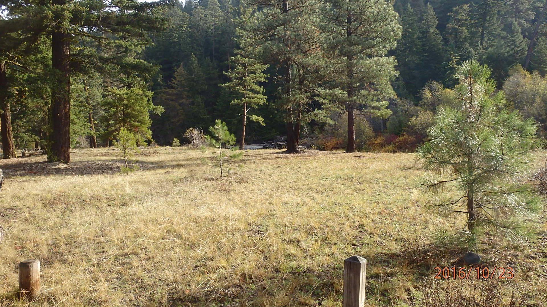 Halfway Flat Campground Site 8Open with plenty of sunshine