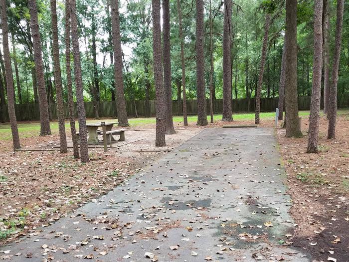 Campsite E11
