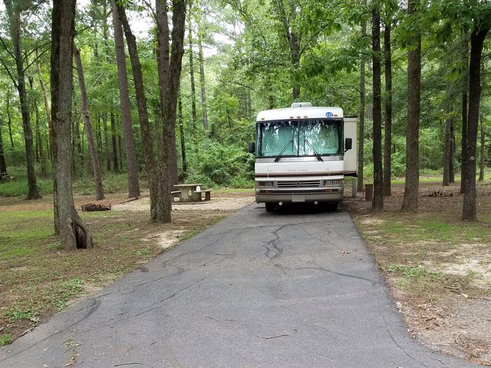 Campsite E9