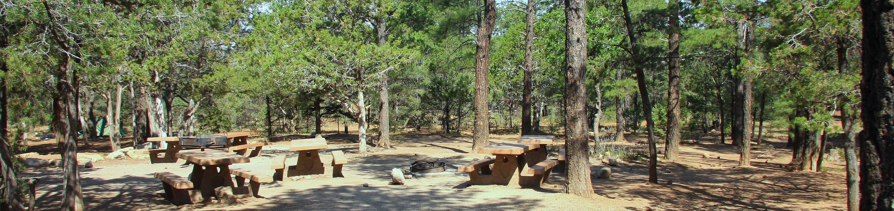 Picnic tables and fire pit Mather Campground