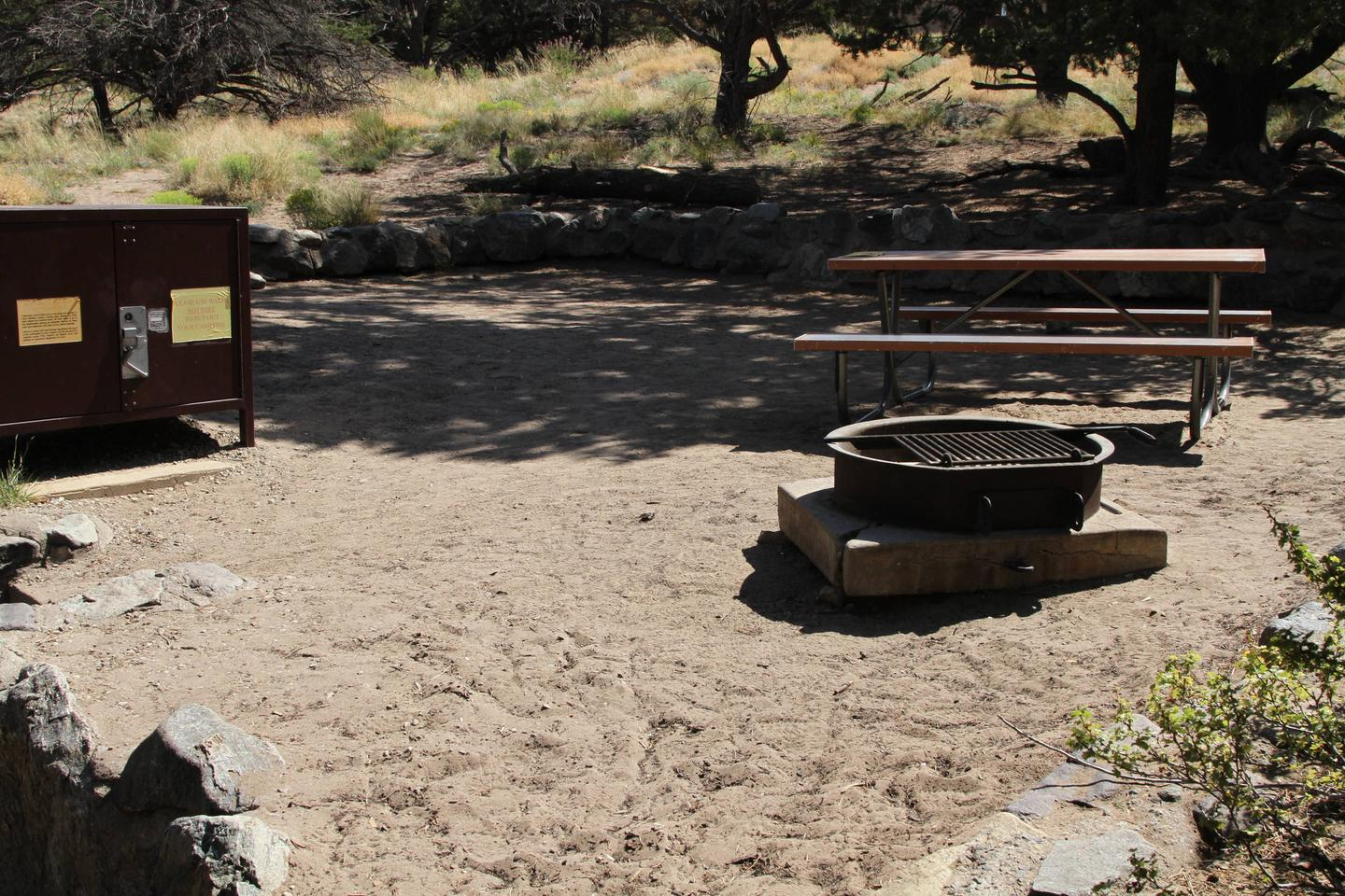 Site #72, Pinon Flats Campground