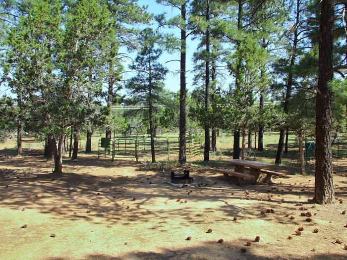 Picnic tables, fire pit, and horse corral Mather Campground
