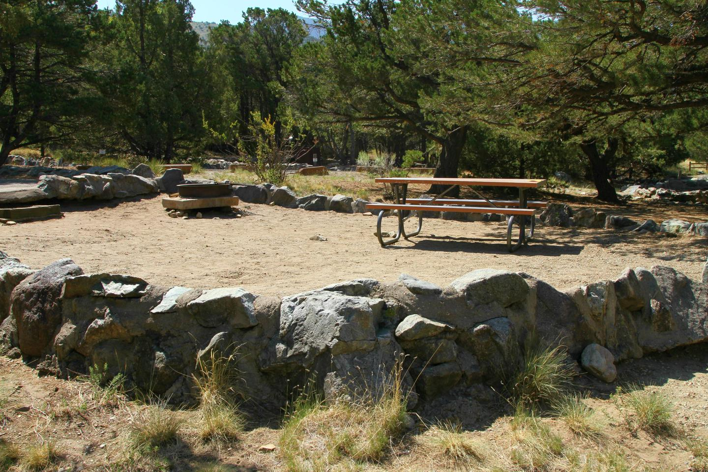 Site #78, Pinon Flats Campground