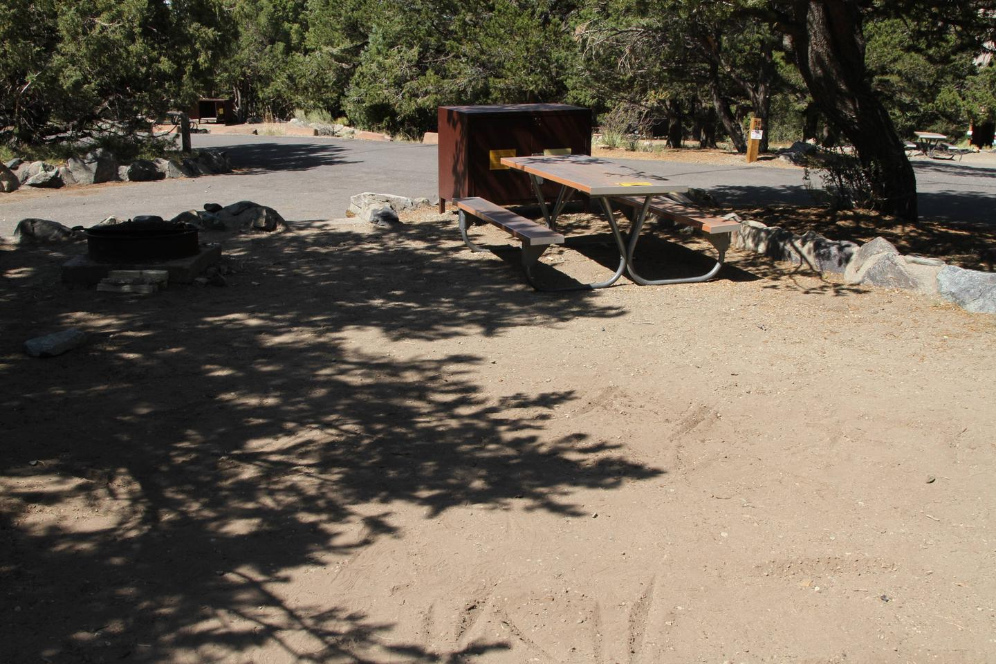 Back view of Site #79 tent pad, with bear box, picnic table, and fire ring. Site is partially shaded in this picture.Site #79, Pinon Flats Campground