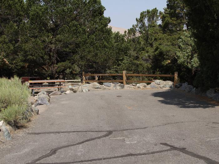 Site #82, Pinon Flats Campground
