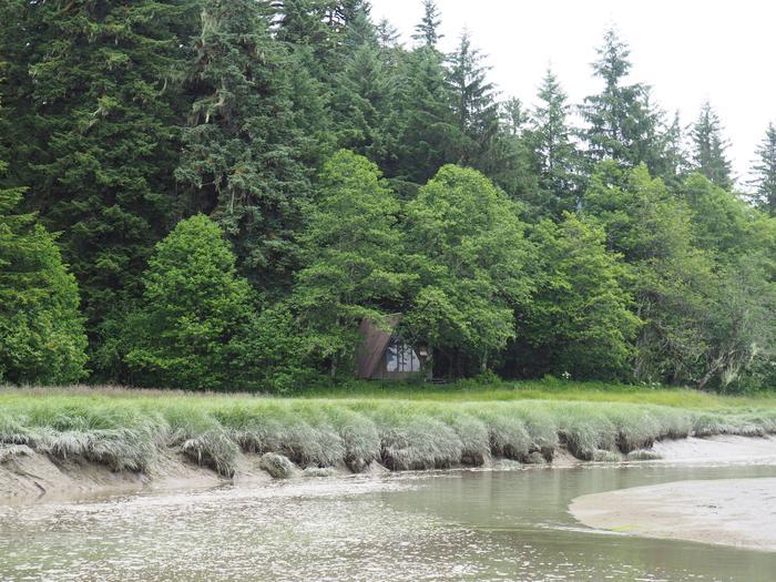 Mallard Slough Cabin surrounded by treesMallard Slough Cabin