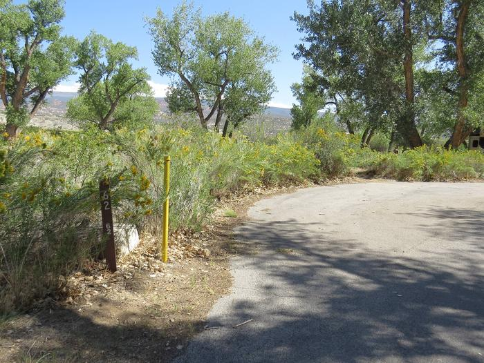 Site 62Pull-through parking area