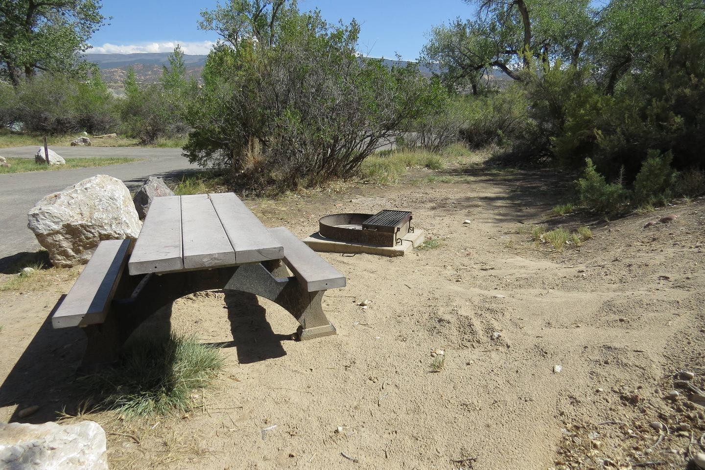 Site 67 picnic table and fire ringSite 67