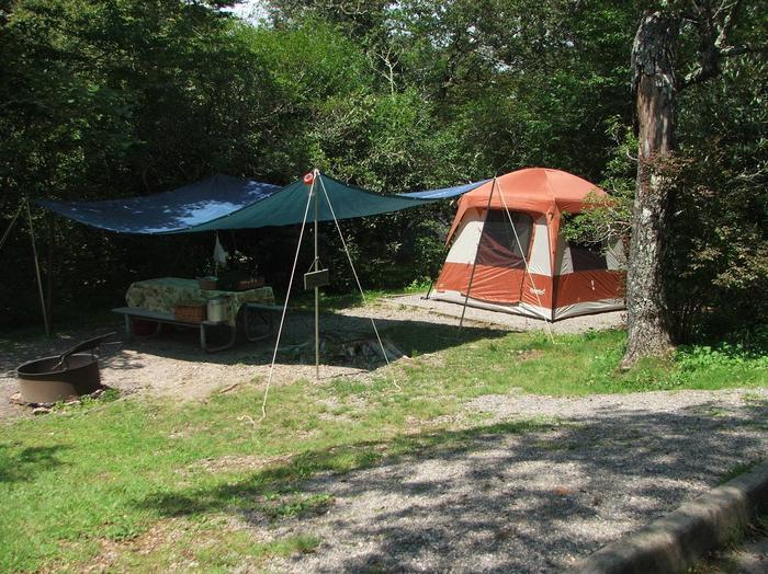 C Loop Site 2 - Tent Nonelectric