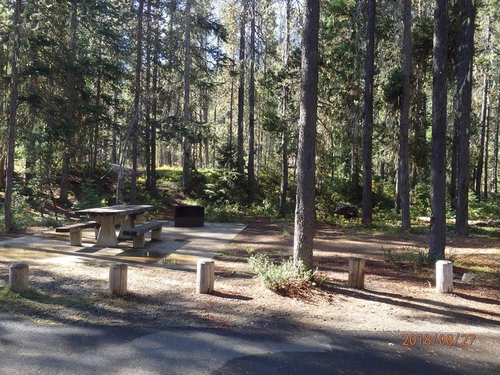 Lodge Pole CampgroundCampsite 31