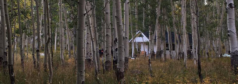 Cabin in the woodsWarner Lake Cabin