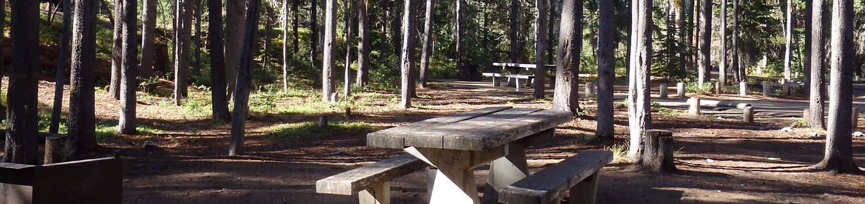 Lodge Pole CampgroundCampsite 29