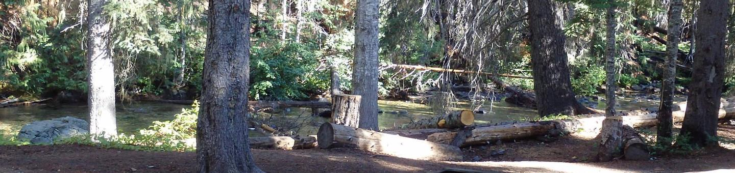 Lodge Pole CampgroundNestled along the American River is site 28