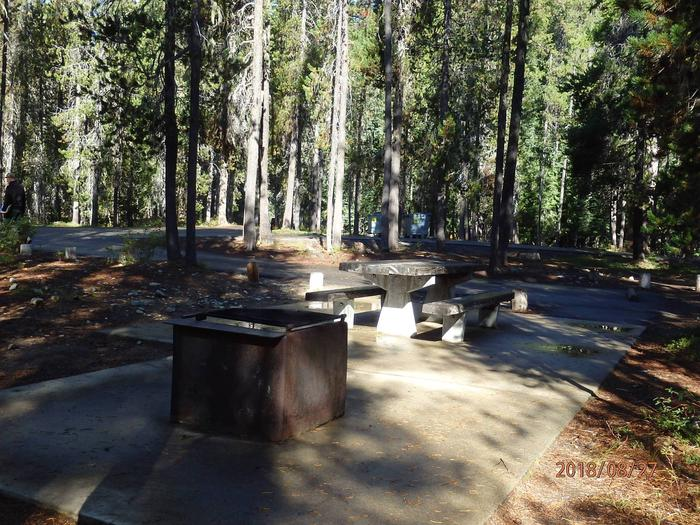 Lodge Pole CampgroundCampsite 22