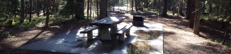 Lodge Pole CampgroundCampsite 18