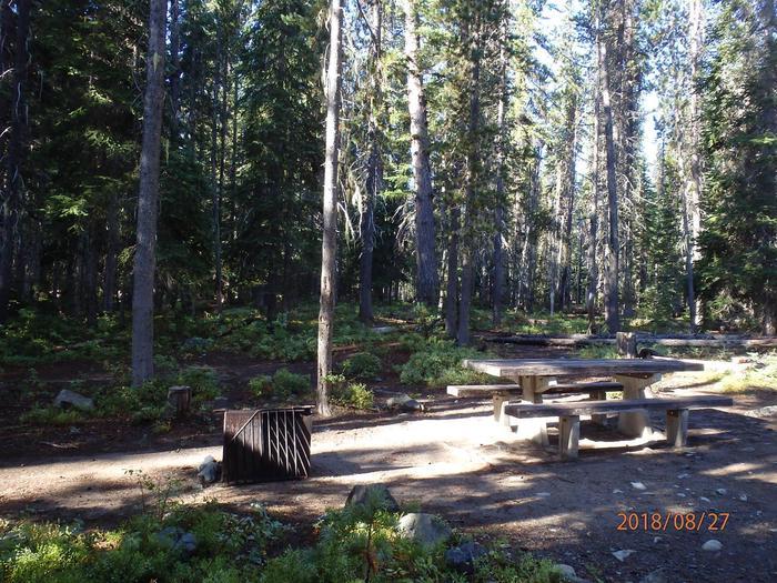Lodge Pole CampgroundCampsite 14