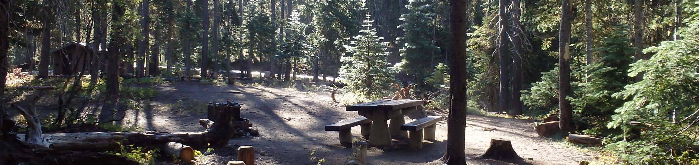 Lodge Pole CampgroundCampsite 13