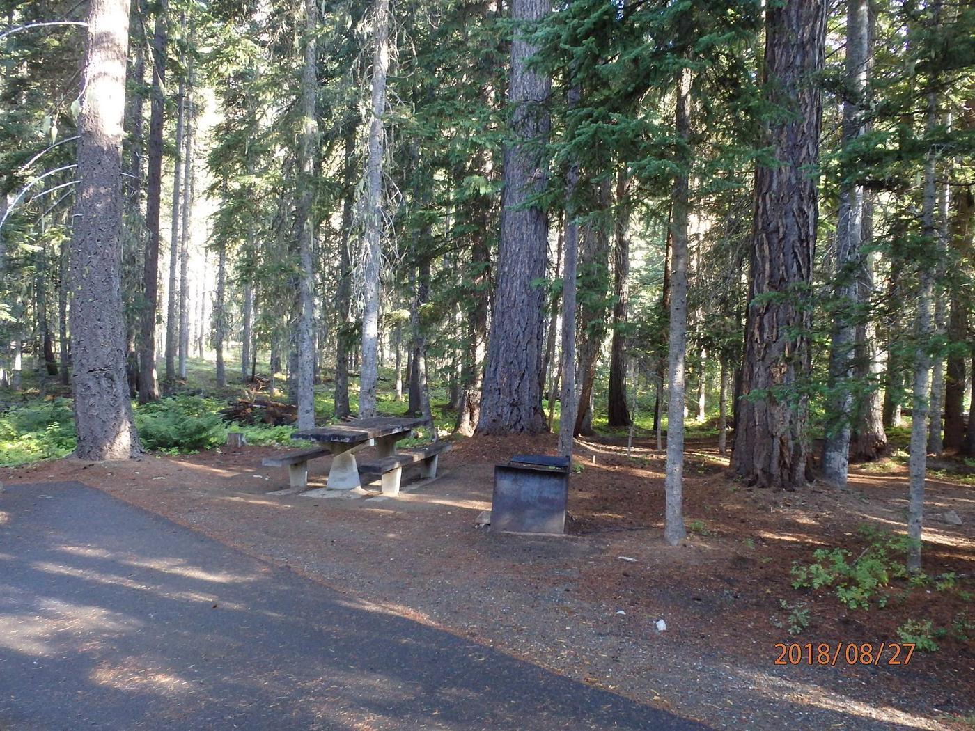 Lodge Pole CampgroundCampsite 8