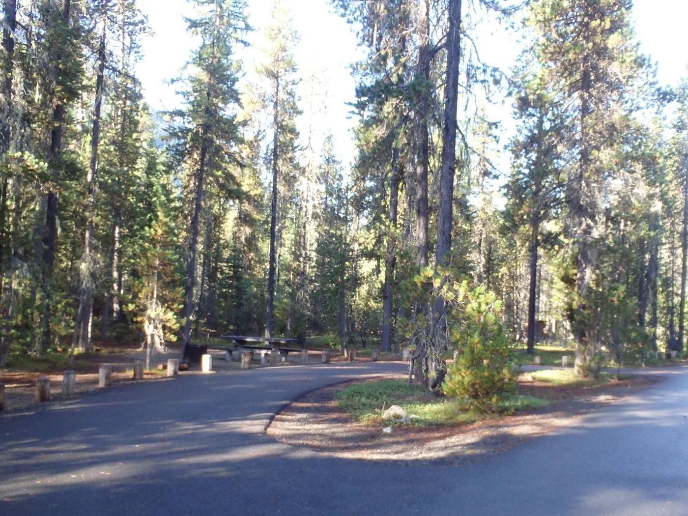Lodge Pole CampgroundCampsite 2