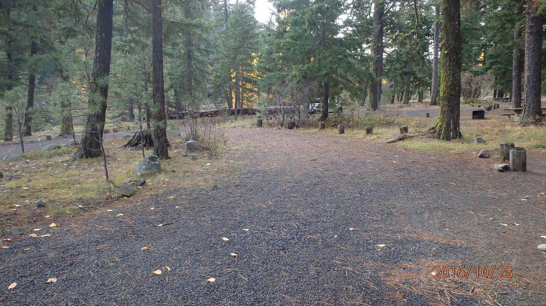 Halfway Flat CampgroundCampsite 1
