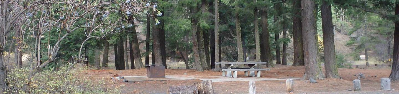 Halfway Flat CampgroundCampsite 3