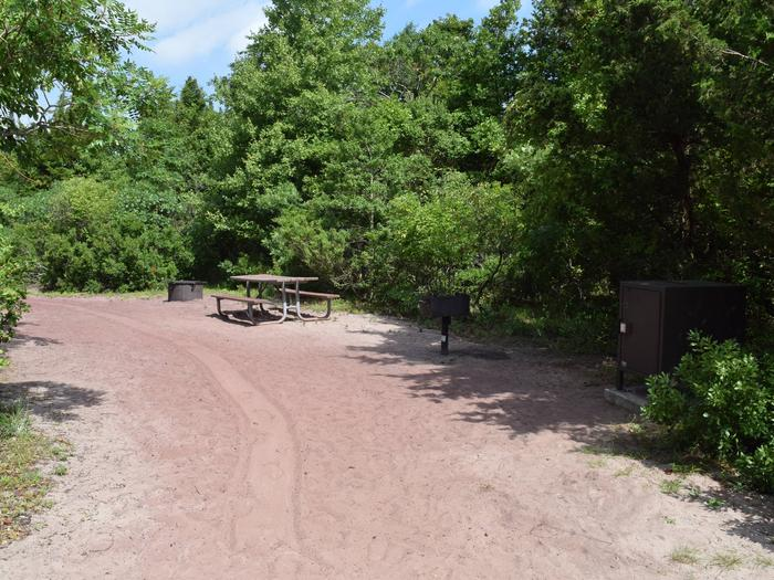 View of campsite E20. Showing a food storage locker, fire ring, BBQ pit, and picnic table.E20