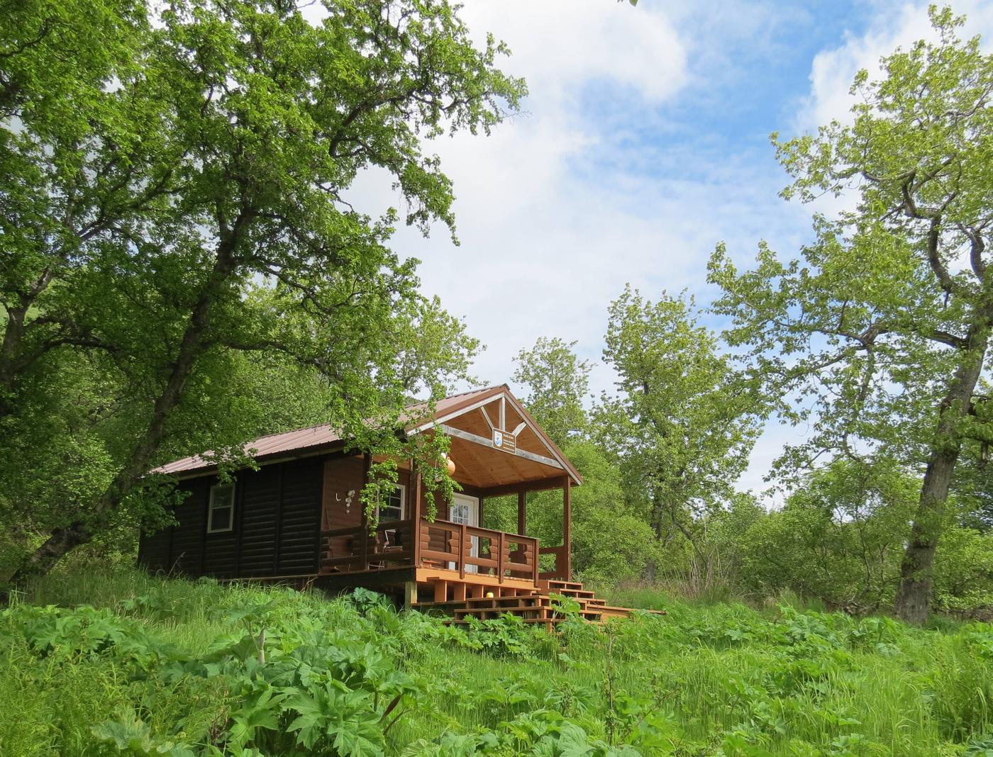 Uganik Island CabinUganik Island Cabin
