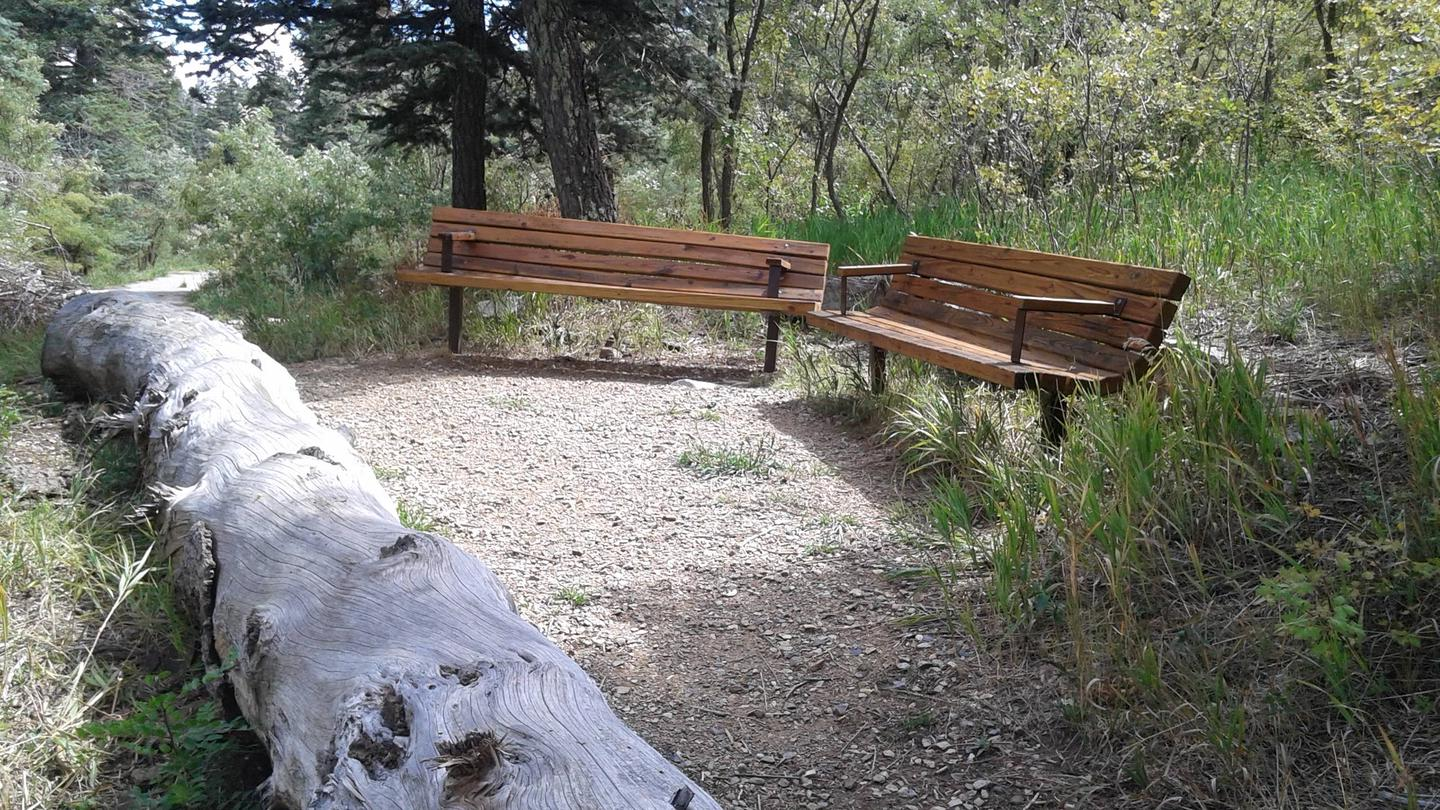 This is a picture of Benches at the birding logRest on the benches at the birding log