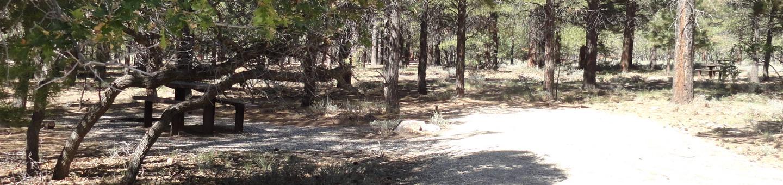 CampgroundCampsite 16