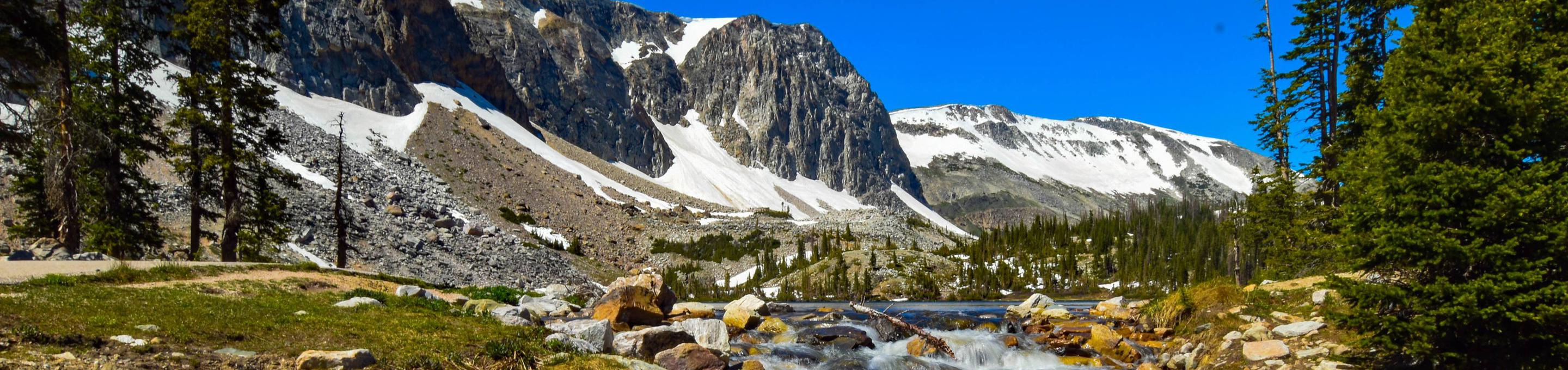 Medicine Bow Routt National Forest