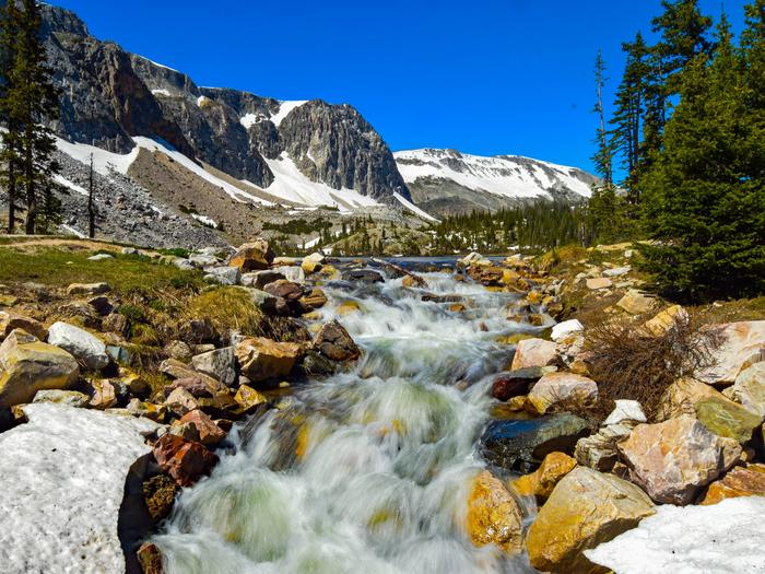 Preview photo of Medicine Bow-Routt Nfs & Thunder Basin Ng