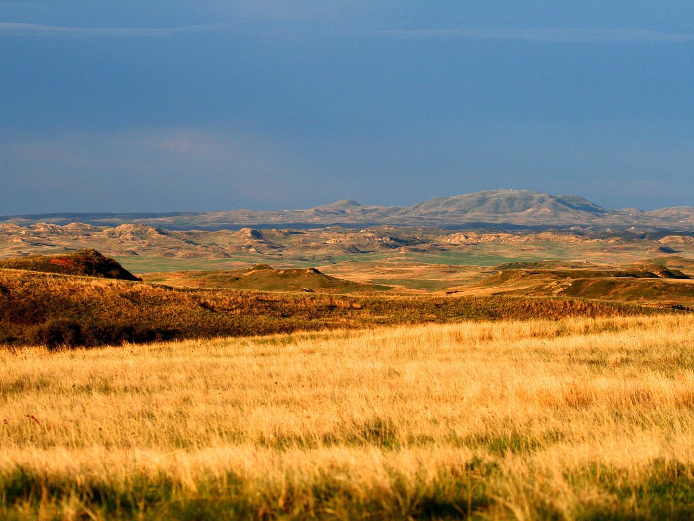 Dakota Prairie National Grasslands