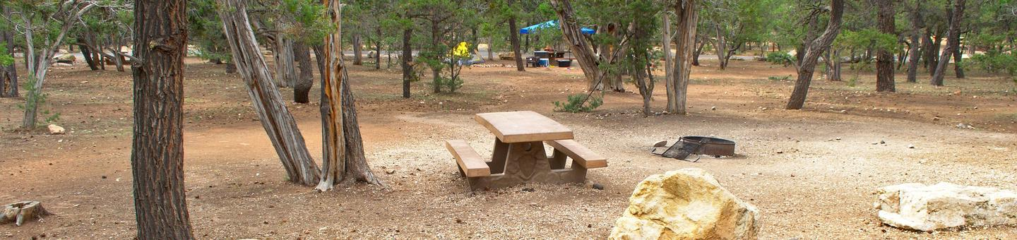 Picnic table and fire pit, Mather Campground