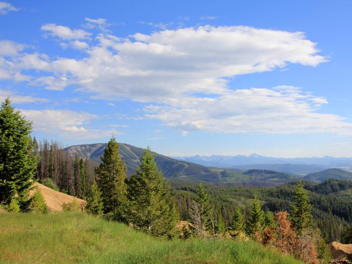 Preview photo of Beaverhead-Deerlodge National Forest
