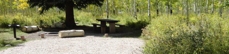 CampgroundCampsite 17