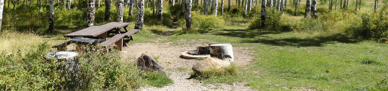 CampgroundCampsite 18
