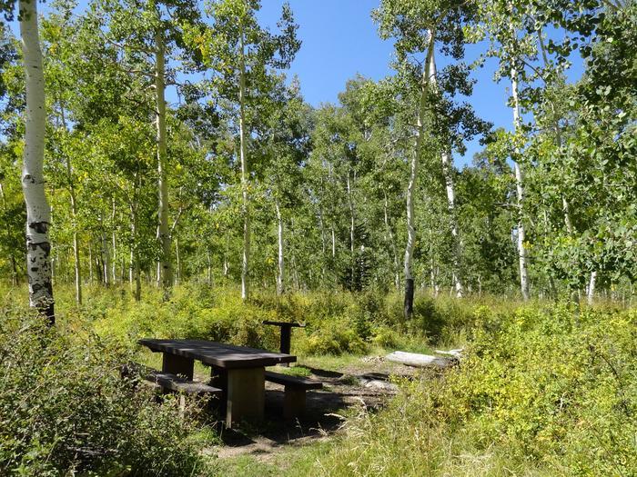 CampgroundCampsite 19